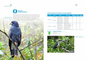 Aves acuaticas de Colombia final junio baja _Página_27.jpg
