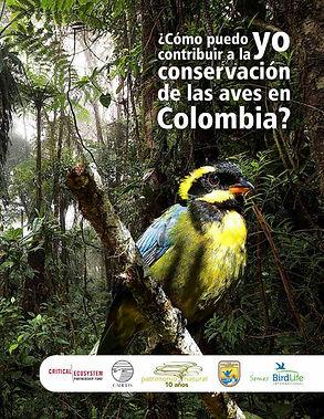 Cómo puedo yo contribuir a la conservación de las aves en Colombia_Página_01.jpg