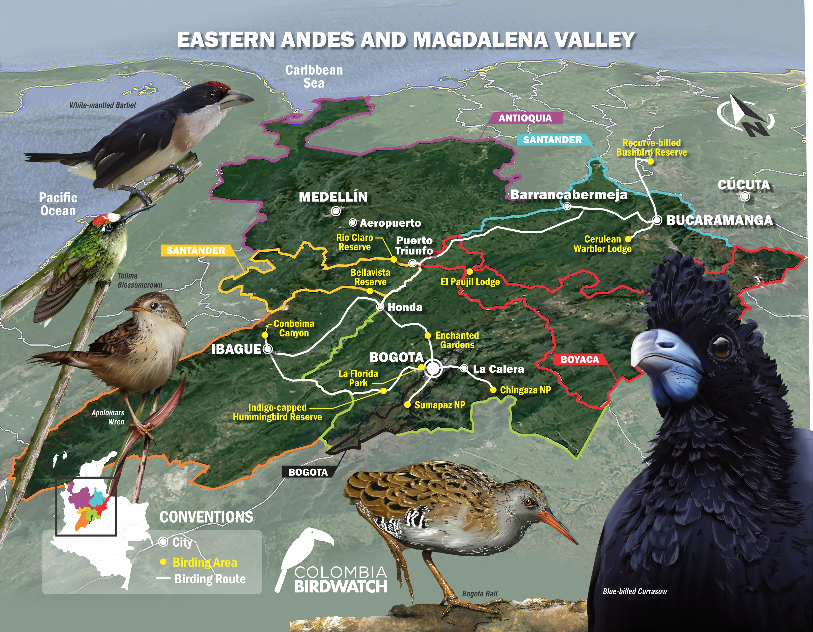 EASTERN ANDES AND MAGDALENA VALLEY