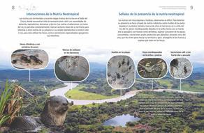Cartilla Nutrias y Peces dos páginas_Página_05.jpg