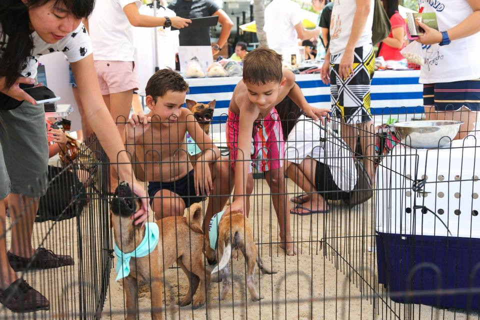 Kane Ian @ Animal Lovers League Adoption Drive - Tanjong Beach Club (Sept 27th) 23