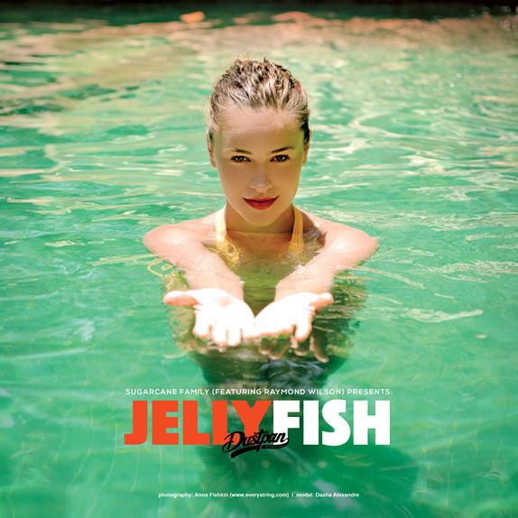 Sugarcane Family - Jellyfish - Dustpan Recordings