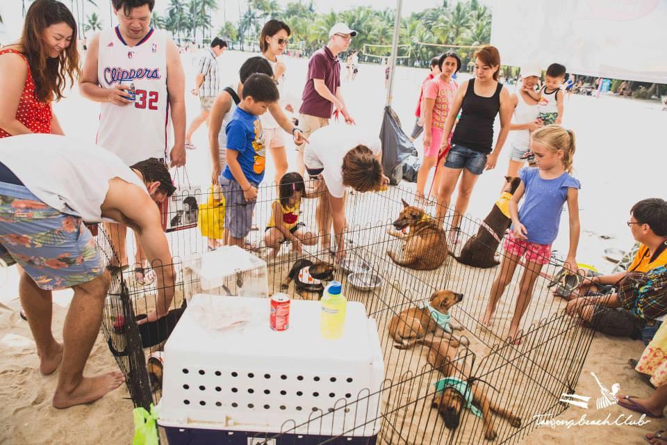 Kane Ian @ Animal Lovers League Adoption Drive - Tanjong Beach Club (Sept 27th) 11