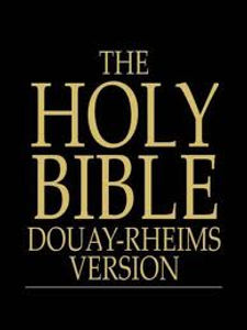 daily-plenary-indulgence-for-those-who-recite-passages-from-scripture-from-the-holy-bible-douay-rheims-latin-vulgate-pamphlets-to-inspire