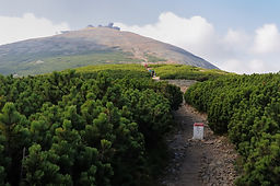 View of the Sniezka.jpgThe mountain trai