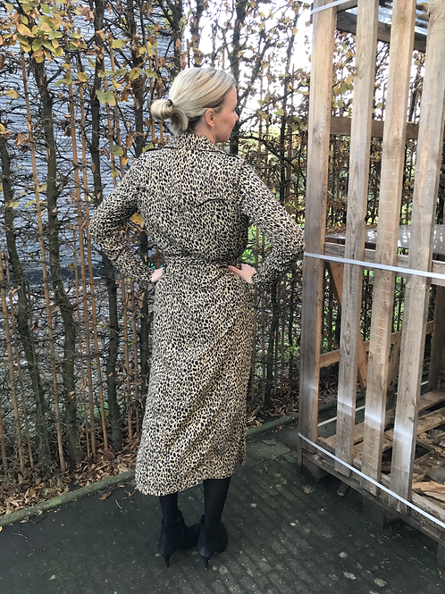 Co'couture trench dress