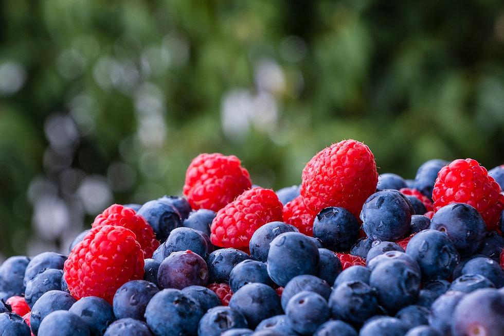 raspberries-5163804_1920.jpg