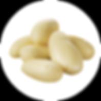 varieties_0007_cashmere-gold.png