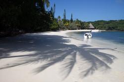 Beach of Ile des Pins