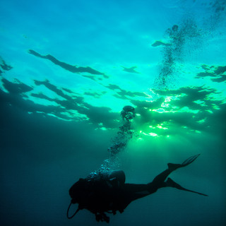 diver-manta-resort.jpg