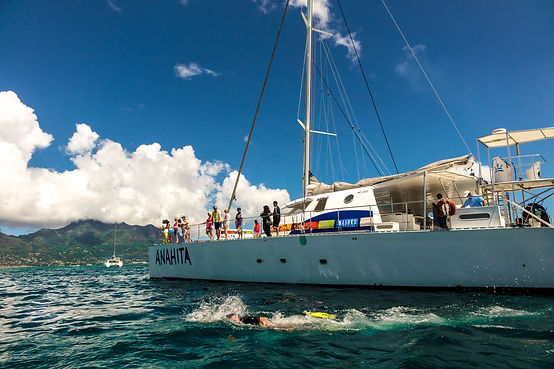 Excursion - Reef Safari (1) Catamaran An