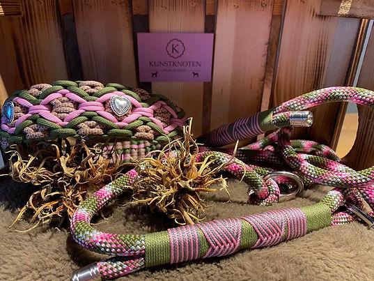 Beispiele für Sets aus Hundhalsband und Leinen