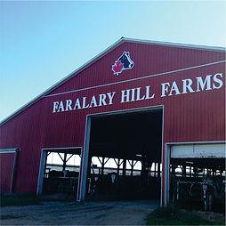 FARM IMAGE - faralary.jpg