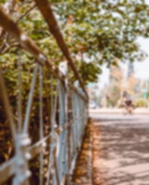 Lifestyle-bridge-cyclist-outdoor-park.jp