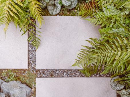 Landscape Architecture: Sunrise Details