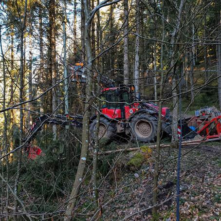 EGON® Freileitungsbau unterwegs in Schenkenzell