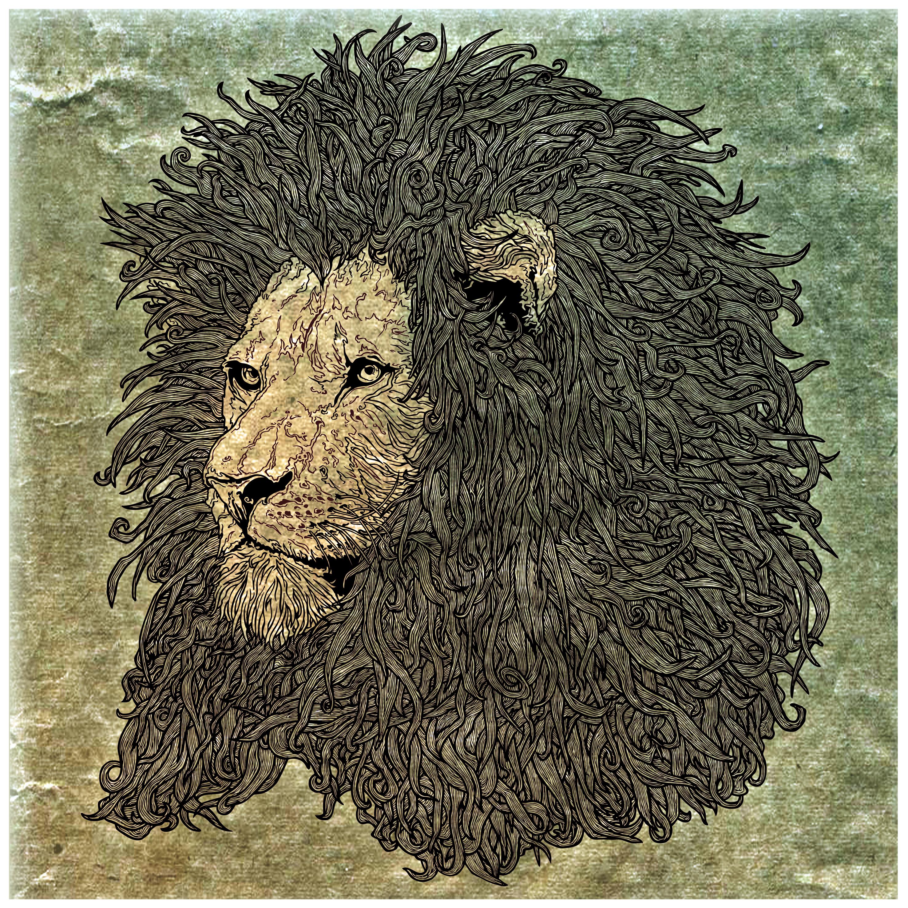 Lion [FINAL]