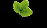 Hasselfors_garden_logga_CMYK_PNG.png