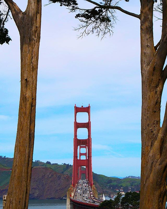 Golden Gate Overlook offers a view of the Golden Gate bridge  like no other.