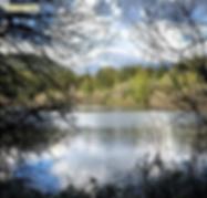 lake tradition trail, Issaquah