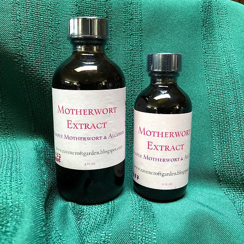 Motherwort Leonurus cardiaca Extract
