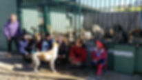 Saddle Club kds at the South Union Hunt kennels