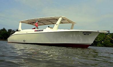 Red Mangrove for demanding cruises
