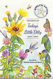 """Book cover for  """"The Best of Today's Little Ditty 2014-2015."""""""