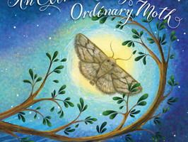 An Extraordinary Ordinary Moth - Perfect Picture Book Friday #PPBF