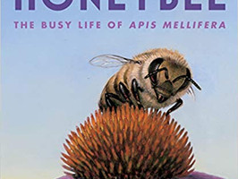 Honeybee: The Busy Life of Apis Mellifera - Perfect Picture Book Friday #PPBF