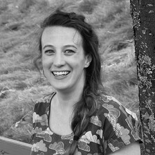 The Picture Book Buzz - Interview with Katy Tanis and Review of Love in the Wild