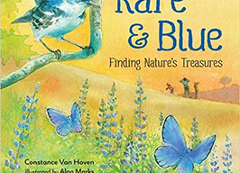 Rare & Blue: Finding Nature's Treasures - Perfect Picture Book Friday #PPBF