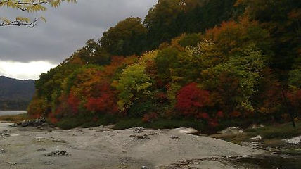 Maria Marshall, picture of fall in Aomori Prefecture, Japan