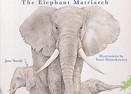 She Leads: The Elephant Matriarch - Perfect Picture Book Friday #PPBF