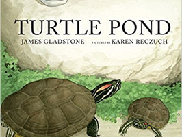 Turtle Pond - Perfect Picture Book Friday #PPBF