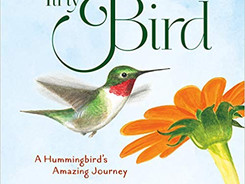 Tiny Bird: A Hummingbird's Amazing Journey - Perfect Picture Book Friday #PPBF