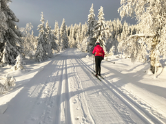 Skitur på Lygna i fantastisk vintervær