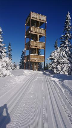 Lushaugtårnet