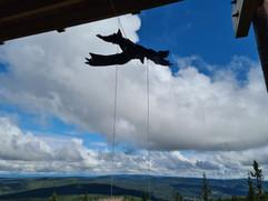 """Ta turen for å se på skulpturen """"Boreale flyvere"""" av Anna Widén på Lushaugtårnet"""