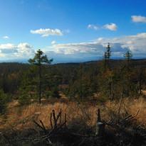 Utsikt fra Lygna utover Viggadalen