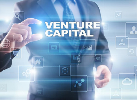 Define some of the following VC terminologies