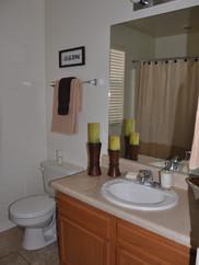 Lone Star Guest Bath