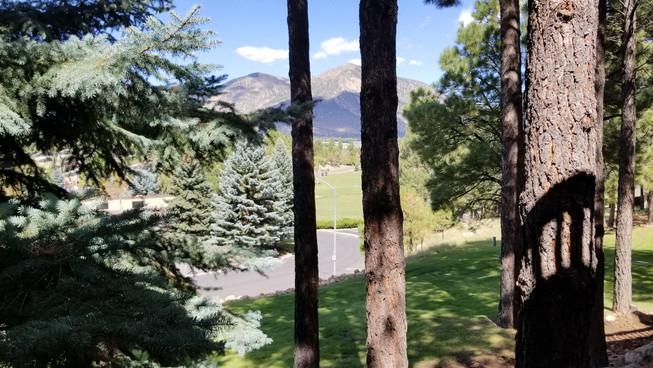 Pinon Deck View