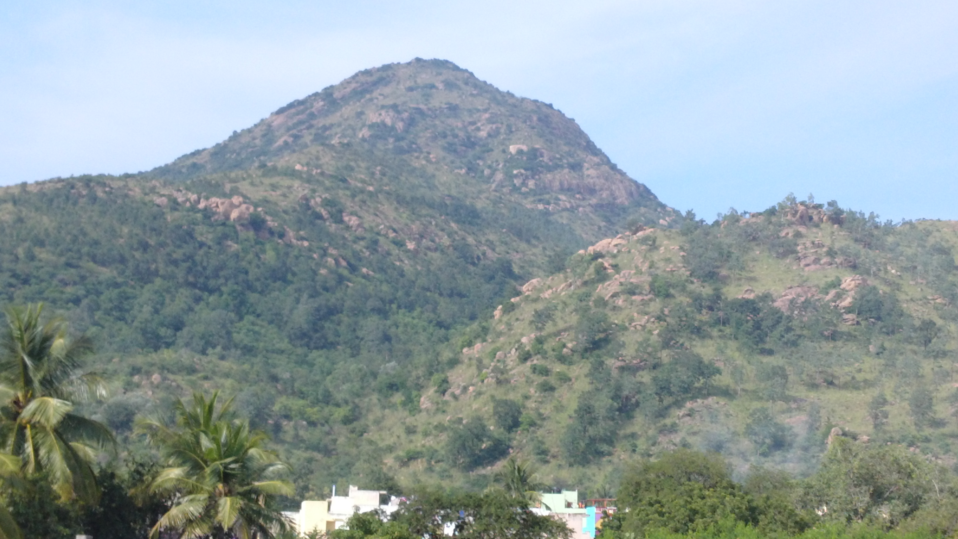 The call of Arunachala