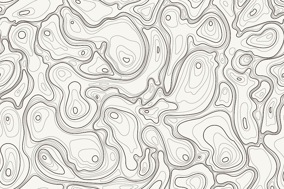 29 Topographic Map.jpg