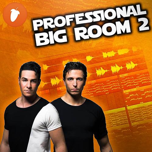 Professional Big Room FLP