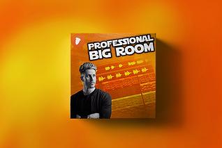 Professional Big Room.png
