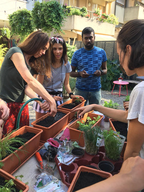 urban gardening workshop, urbanroots