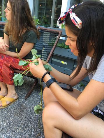 urbanroots urban gardening workshop
