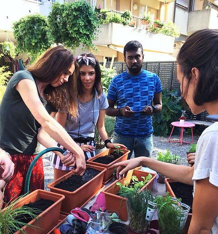 Urbanroots, urban roots, urban gardening schweiz, bio samen, bio saatgut, balkon bepflanzen, gemüse auf dem balkon, garten workshop, gärtnern für anfänger, garten kurs